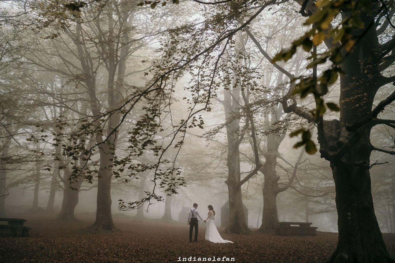 fotografia de bodas en tudela