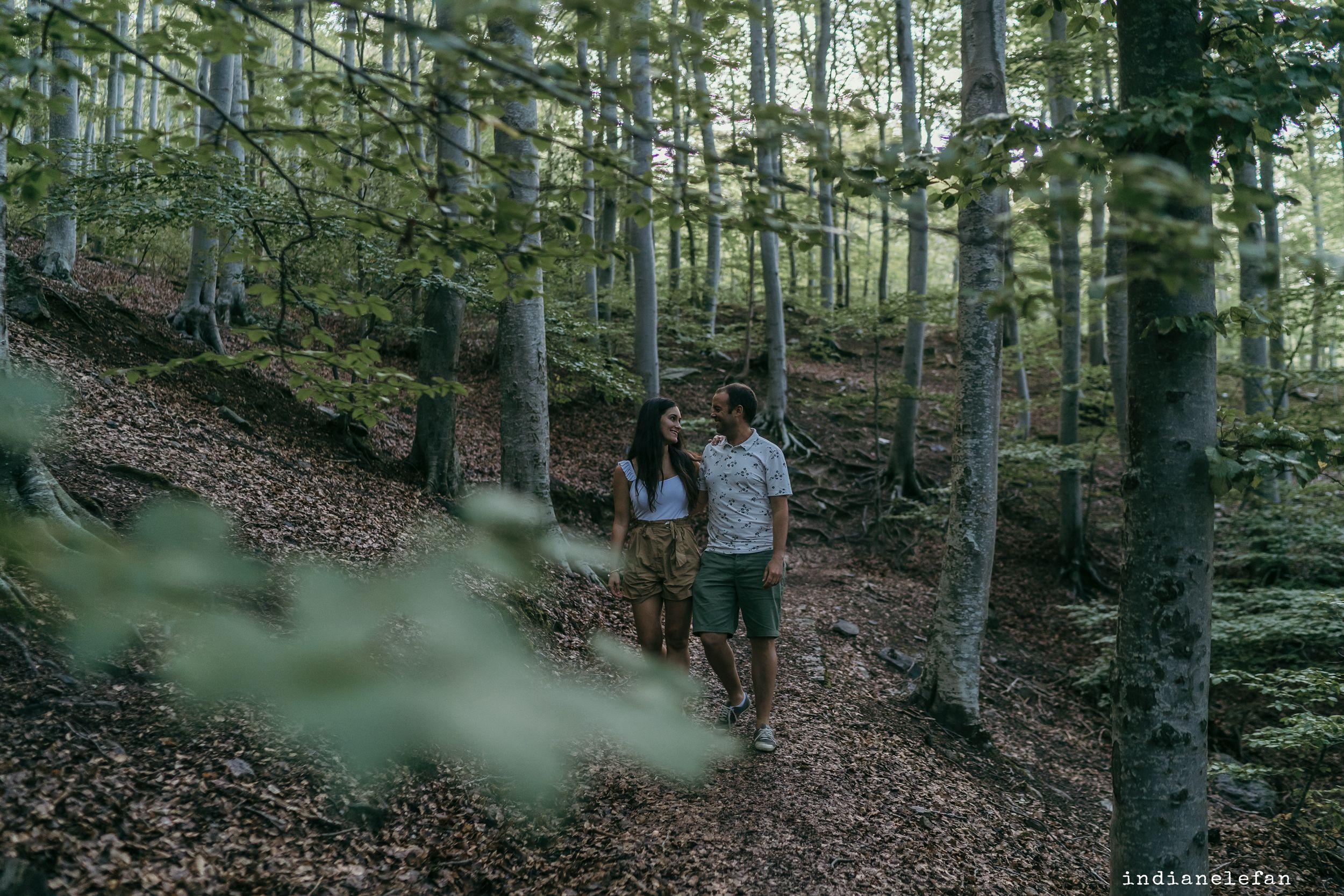 preboda novios bosques