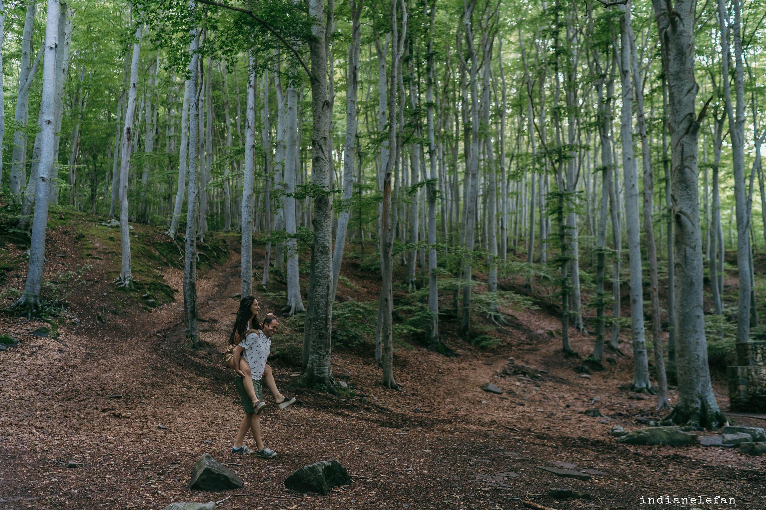 prebodas bosques